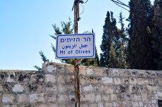 Mount of Olives 1/2.