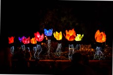 Jerusalem Light Festival.